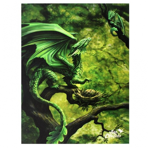 Forest Dragon Age of Dragons Anne Stokes