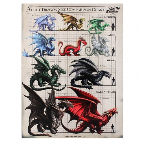 Dragon Sieze Comparison Chart Age of Dragons Anne Stokes